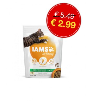 IAMS cat adult chicken <BR>800gr